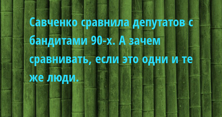 — Савченко сравнила депутатов с бандитами 90-х. — А зачем сравнивать, если это одни и те же люди.