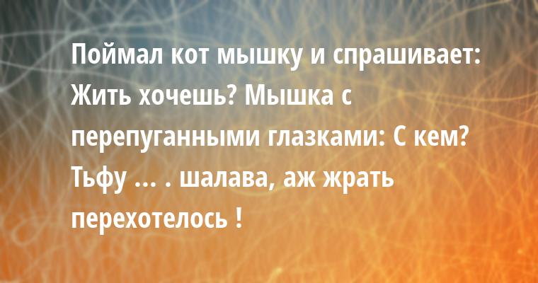Поймал кот мышку и спрашивает: — Жить хочешь? Мышка с перепуганными глазками: — С кем? — Тьфу ... . шалава, аж жрать перехотелось !
