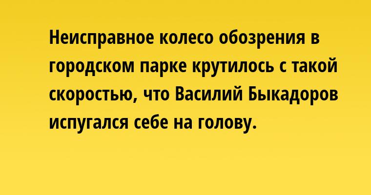 Неисправное колесо обозрения в городском парке крутилось с такой скоростью, что Василий Быкадоров испугался себе на голову.