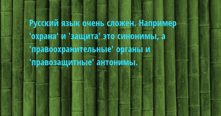 Русский язык очень сложен. Например  'охрана' и 'защита' — это синонимы, а  'правоохранительные' органы и  'правозащитные' — антонимы.