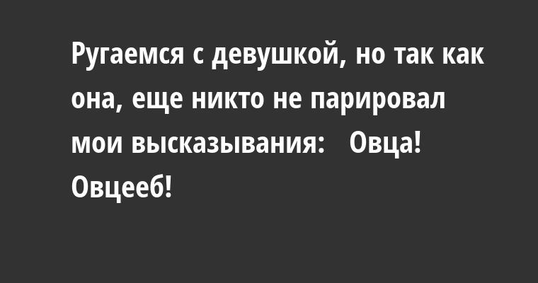 Ругаемся с девушкой, но так как она, еще никто не парировал мои высказывания:  —  Овца!  —  Овцееб!