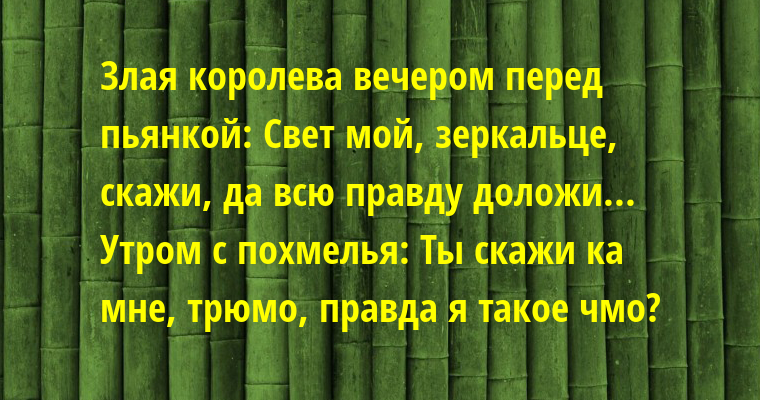 Злая королева вечером перед пьянкой: — Свет мой, зеркальце, скажи, да всю правду доложи... Утром с похмелья: — Ты скажи ка мне, трюмо, правда я такое чмо?