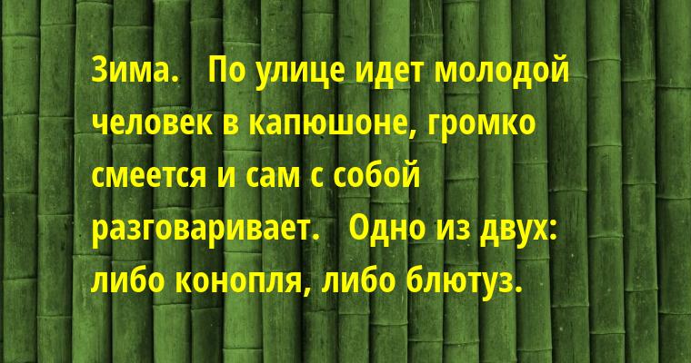 Зима.   По улице идет молодой человек в капюшоне, громко смеется и сам с собой разговаривает.   Одно из двух: либо конопля, либо блютуз.