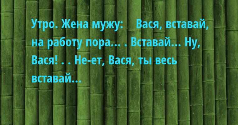 Утро. Жена мужу:    - Вася, вставай, на работу пора... . Вставай... Ну, Вася! . . Не-ет, Вася, ты весь вставай...
