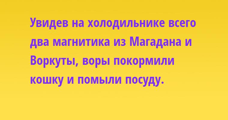 Увидев на холодильнике всего два магнитика — из Магадана и Воркуты, воры покормили кошку и помыли посуду.