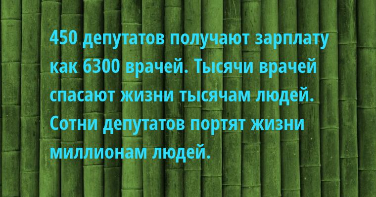 450 депутатов получают зарплату как 6300 врачей. Тысячи врачей спасают жизни тысячам людей. Сотни депутатов портят жизни миллионам людей.