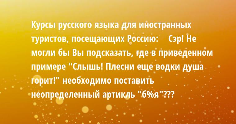 Курсы русского языка для иностранных туристов, посещающих Россию:    Сэр! Не могли бы Вы подсказать, где в приведенном примере
