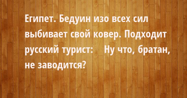 Египет. Бедуин изо всех сил выбивает свой ковер. Подходит русский турист:    — Ну что, братан, не заводится?