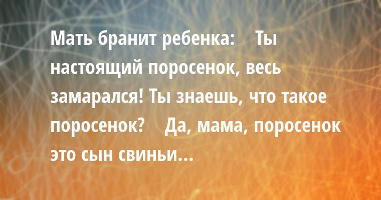 Мать бранит ребенка:    — Ты настоящий поросенок, весь замарался! Ты знаешь, что такое поросенок?    — Да, мама, поросенок — это сын свиньи...