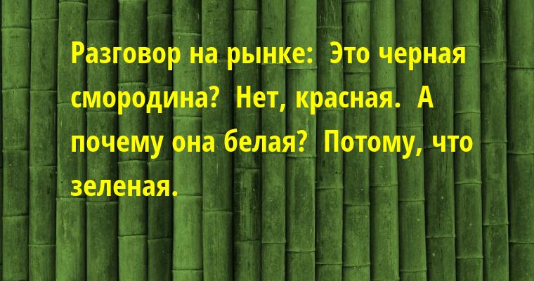 Разговор на рынке: —  Это черная смородина? —  Нет, красная. —  А почему она белая? —  Потому, что зеленая.