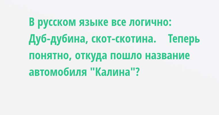 В русском языке все логично:    Дуб-дубина, скот-скотина.    Теперь понятно, откуда пошло название автомобиля