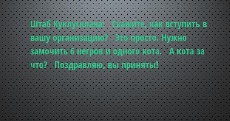 Штаб Куклусклана:   — Скажите, как вступить в вашу организацию?   — Это просто. Нужно замочить 6 негров и одного кота.   — А кота за что?   — Поздравляю, вы приняты!